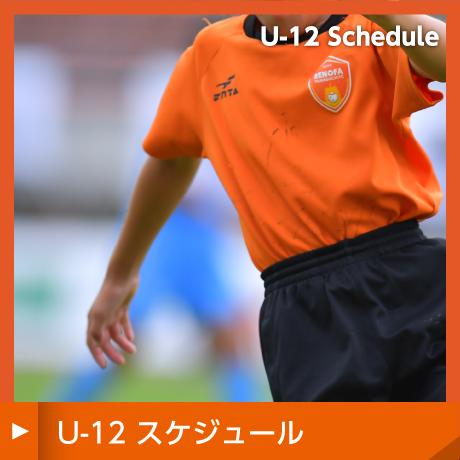u12スケジュール